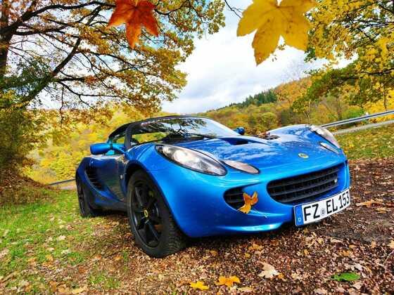 Blue im Herbst